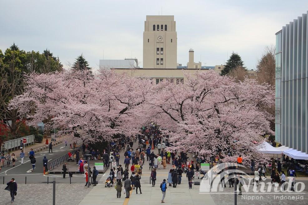 Info Beasiswa Jepang TokyoTech 2017