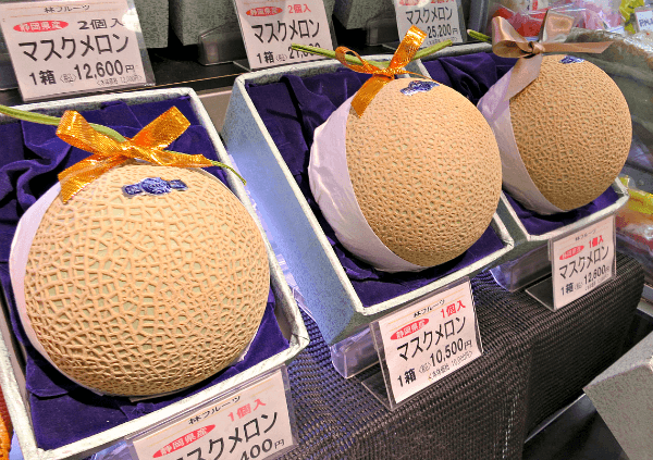 Image result for musk melon japan